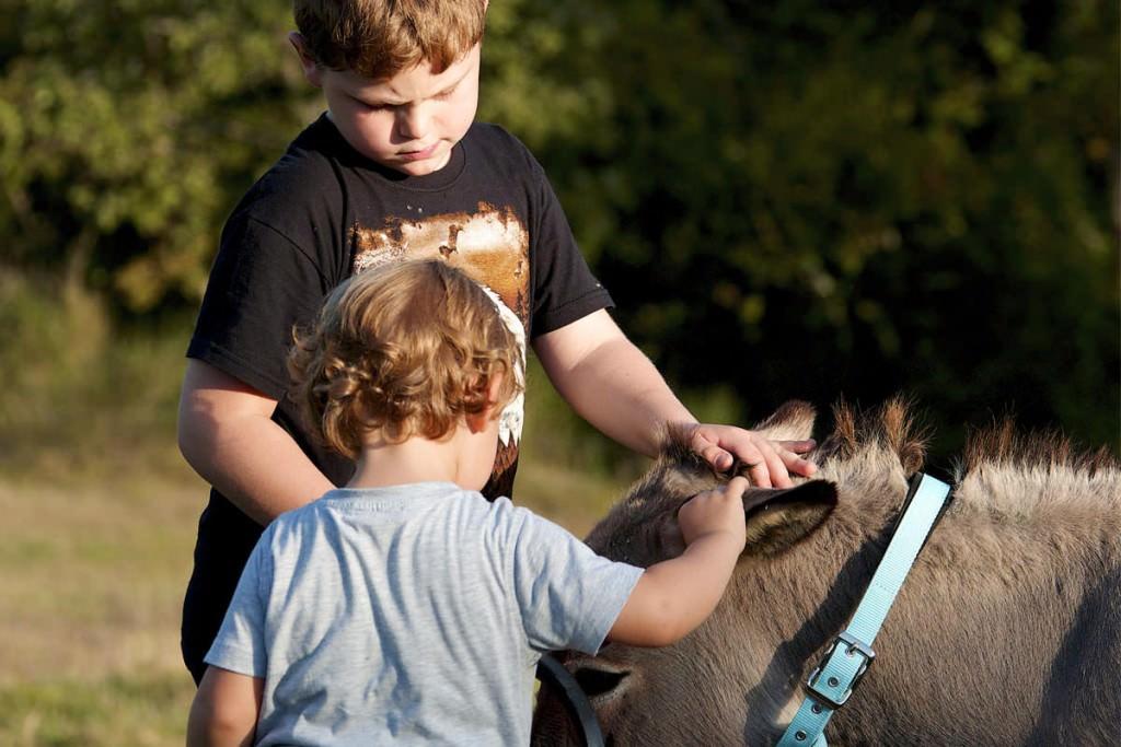 bambini con animali in vacanza assisi umbria
