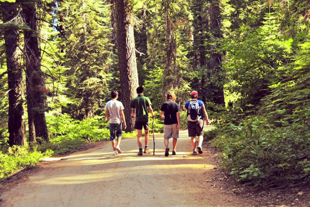 passeggiata nei boschi umbri a contatto con la natura
