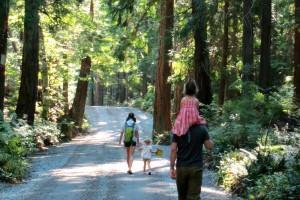 famiglia che passeggia nei boschi a contatto con la natura