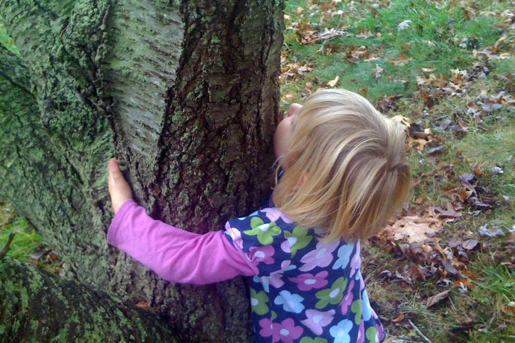 abbraccio degli alberi e respiro del mondo